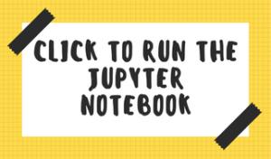 jupyter_notebook_run
